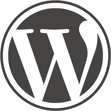 Wordpress based : Content Websites